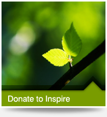 Donate to Inspire